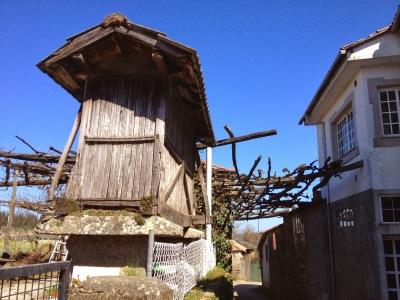 by E.V.Pita (2014) / Galician barns / Por E.V.Pita (2014) Hórreos de Galicia