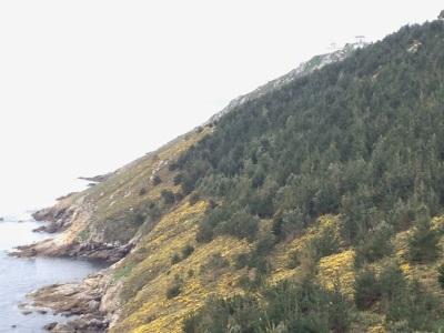 By E.V.Pita (2014), St James' Way from Santiago to Finisterre Cape / Por E.V.Pita (2014),Camino de Santiago hasta el cabo Fisterra